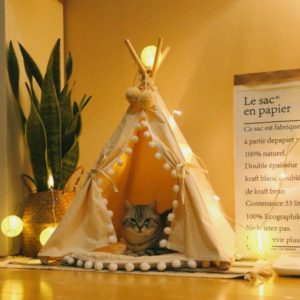 cat teepee, dog teepee, pet teepee, cat tent, dog tent, pet tent, camping, office, home