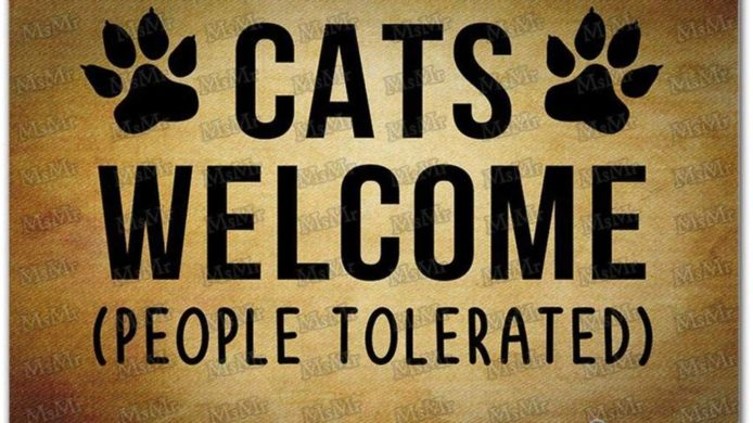 cat doormat, funny doormat, funny front door mat, cat mat