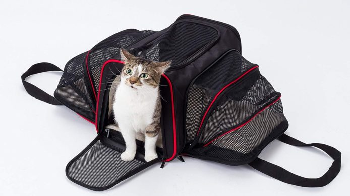 pet carrier, cat carrier, soft pet carrier, airline pet carrier, airline approved pet carrier